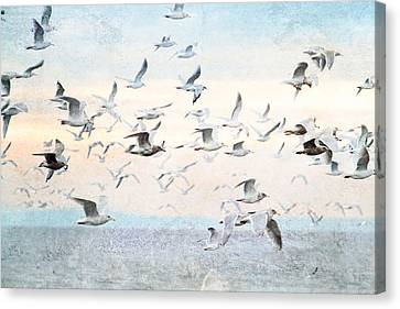 Gulls Flying Over The Ocean Canvas Print by Peggy Collins