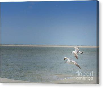 Canvas Print featuring the photograph Gulls In Flight by Erika Weber