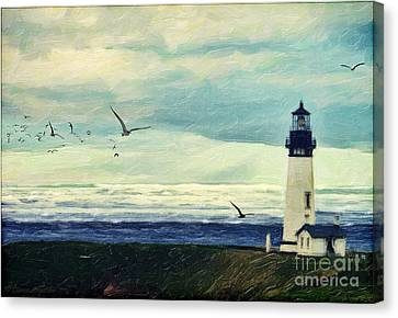 Gulls Way Canvas Print by Lianne Schneider