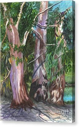 Gum Trees In Oz Canvas Print by Carol Wisniewski