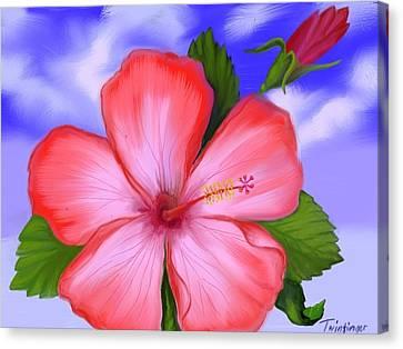 Gumamela Canvas Print by Twinfinger