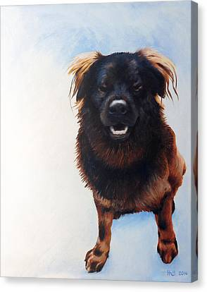 Kevin Hill Canvas Print - Gus by Kevin Hill