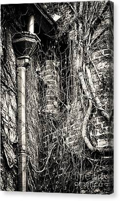 Gutter Pipe Canvas Print by John Rizzuto