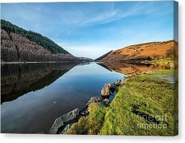 Fall Grass Canvas Print - Gwydyr Forest Lake by Adrian Evans