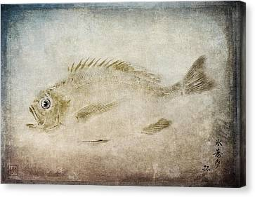 Gyotaku Canvas Print - Gyotaku Fish Rubbing Japanese by Carol Leigh