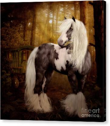 Gypsy Gold Equine Art Canvas Print by Shanina Conway