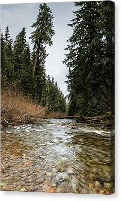 Hackleman Creek  Canvas Print