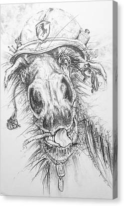 Hair-ied Horse Soilder Canvas Print by Scott and Dixie Wiley