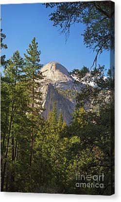Half Dome Yosemite Canvas Print by Jane Rix
