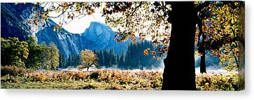 Half Dome, Yosemite National Park Canvas Print by Panoramic Images