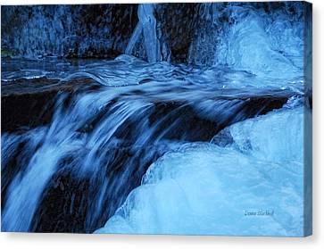Half Frozen Canvas Print by Donna Blackhall