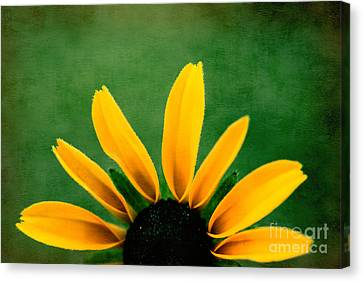 Half Sun - S02ct01 Canvas Print by Variance Collections