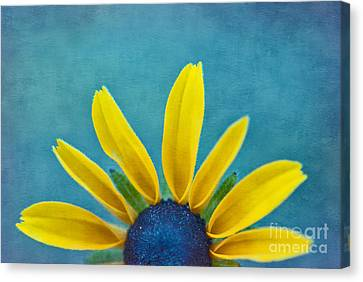 Half Sun - S03dt01a Canvas Print by Variance Collections