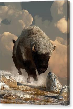 Brown Tones Canvas Print - Half White Bison by Daniel Eskridge