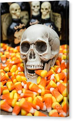 Creepy Canvas Print - Halloween Candy Corn by Edward Fielding
