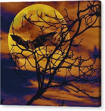 Halloween Full Moon Terror Canvas Print by David Mckinney
