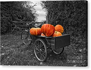 Halloween Harvest Canvas Print by Nick Wardekker