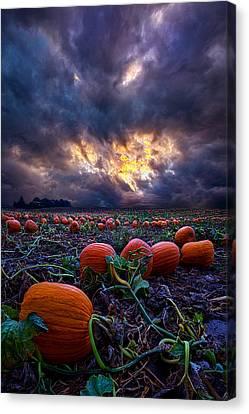 Halloween Is Near Canvas Print by Phil Koch