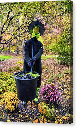 Halloween Witch Canvas Print by Thomas Woolworth
