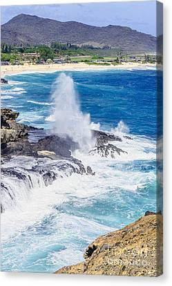 Canvas Print featuring the photograph Halona Blowhole Huge Geyser by Aloha Art