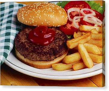 Hamburger And French Fries Canvas Print by The Irish Image Collection