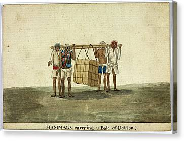 Hammals Carrying A Bale Of Cotton Canvas Print