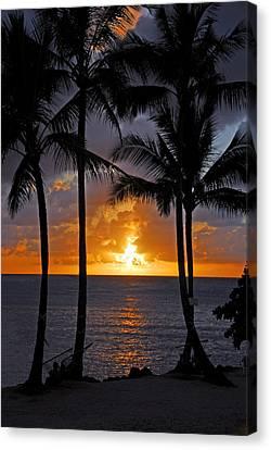 Hammock Sunset Canvas Print by Lynn Bauer