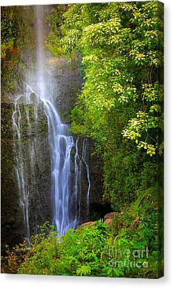 Hana Waterfall Canvas Print by Inge Johnsson