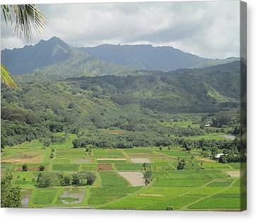 Canvas Print featuring the photograph Hanalei by Alohi Fujimoto