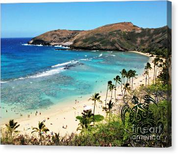 Canvas Print featuring the photograph Hanauma Bay With Turtle by Mindy Bench