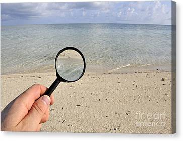 Hand Holding A Magnifying Glass Canvas Print by Sami Sarkis