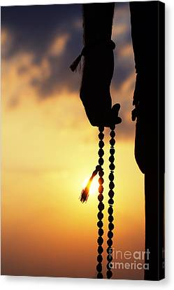 Hand Holding Rudraksha Beads Canvas Print by Tim Gainey