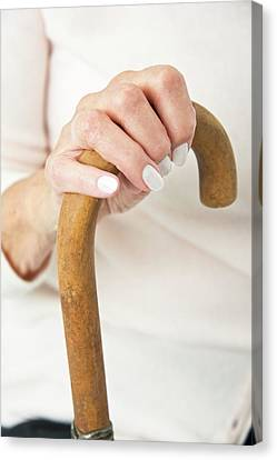Hand On A Walking Stick Canvas Print