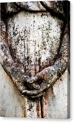 Hands In Prayer Canvas Print by Sonja Quintero