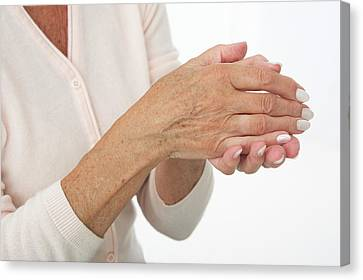 Hands Of An Elderly Woman Canvas Print by Lea Paterson