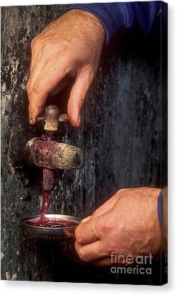 Hands Pulling Red Wine Barrel Canvas Print
