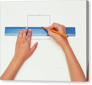 Hands Using Pencil And Ruler Canvas Print by Dorling Kindersley/uig