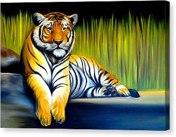 Handsome Tiger Canvas Print by Xafira Mendonsa