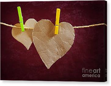 Cardboard Canvas Print - Hanged Heart by Carlos Caetano