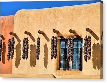 Hanging Around In Taos Canvas Print