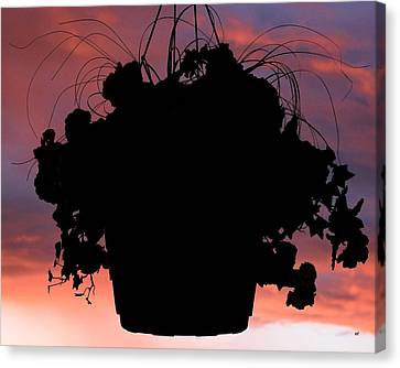 Hanging Basket Silhouette Canvas Print