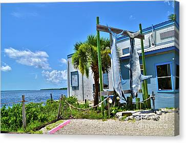 Canvas Print featuring the photograph Hanging In Matlacha Florida by Timothy Lowry