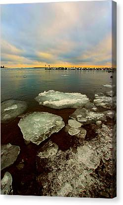 Canvas Print featuring the photograph Hanging On by Amanda Stadther