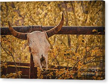 Skull In Rose Canvas Print - Hanging Out In Jerome by Priscilla Burgers