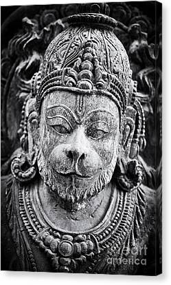 Hanuman Monochrome Canvas Print by Tim Gainey