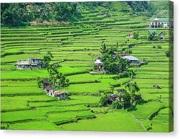 Michael Canvas Print - Hapao Rice Terraces, World Heritage by Michael Runkel