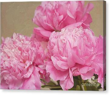 Happiness In Pink Silk Canvas Print by Irina Wardas