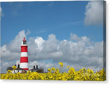 Happisburgh Lighthouse With Oil Seed Rape In Flower Canvas Print by Paul Lilley