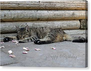 Happy Birthday Sleeping Cat Canvas Print