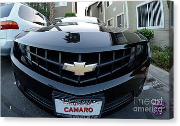 Canvas Print featuring the photograph Happy Camero by Clayton Bruster